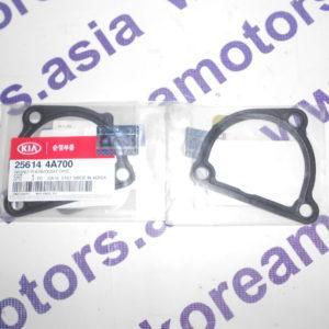 Прокладка под корпус термостата Kia Sorento (D4CB) 256144A700